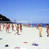 Nudists stripped beach secret.
